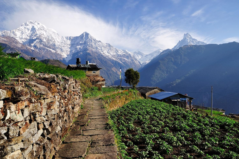 Annapurna Foothills gentle trekking tour
