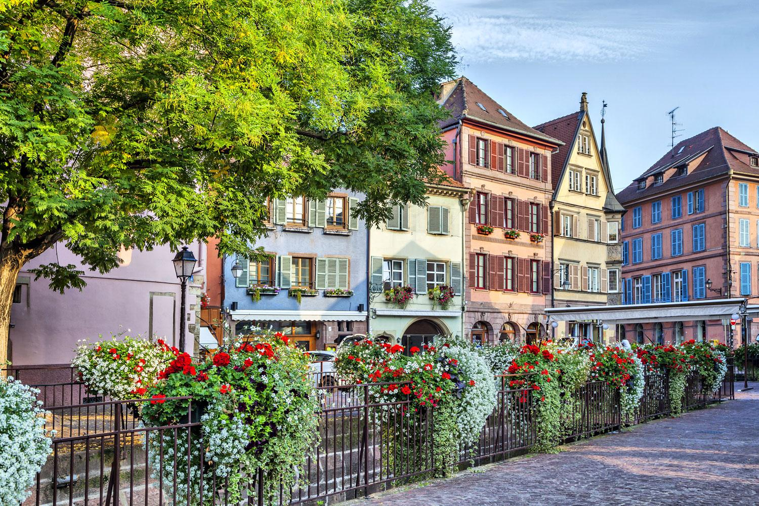 Cycling holiday based in Colmar, Alsace