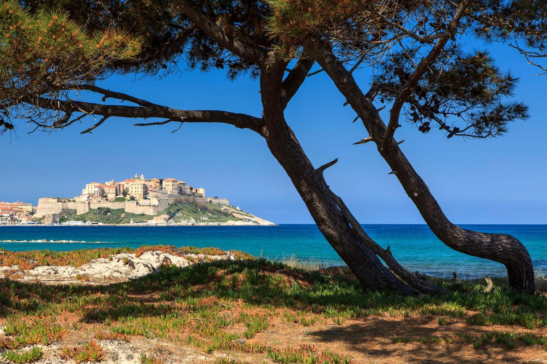 Turquoise seas near Calvi