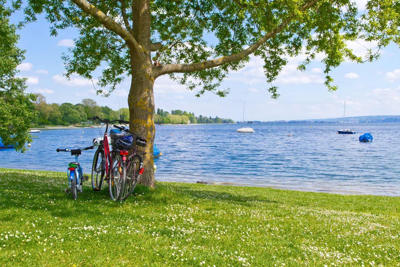 Lakeside picnic spot