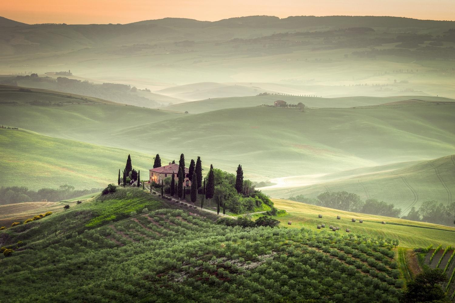 Tuscany's vineyard cloaked landscapes