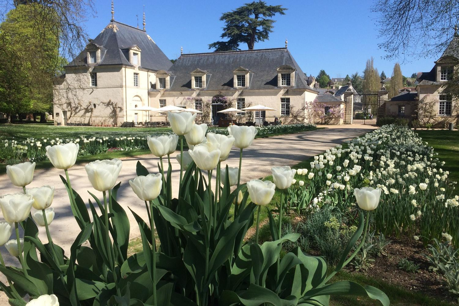 Cycle the Châteaux of The Loire Self-Guided Cycling Trip
