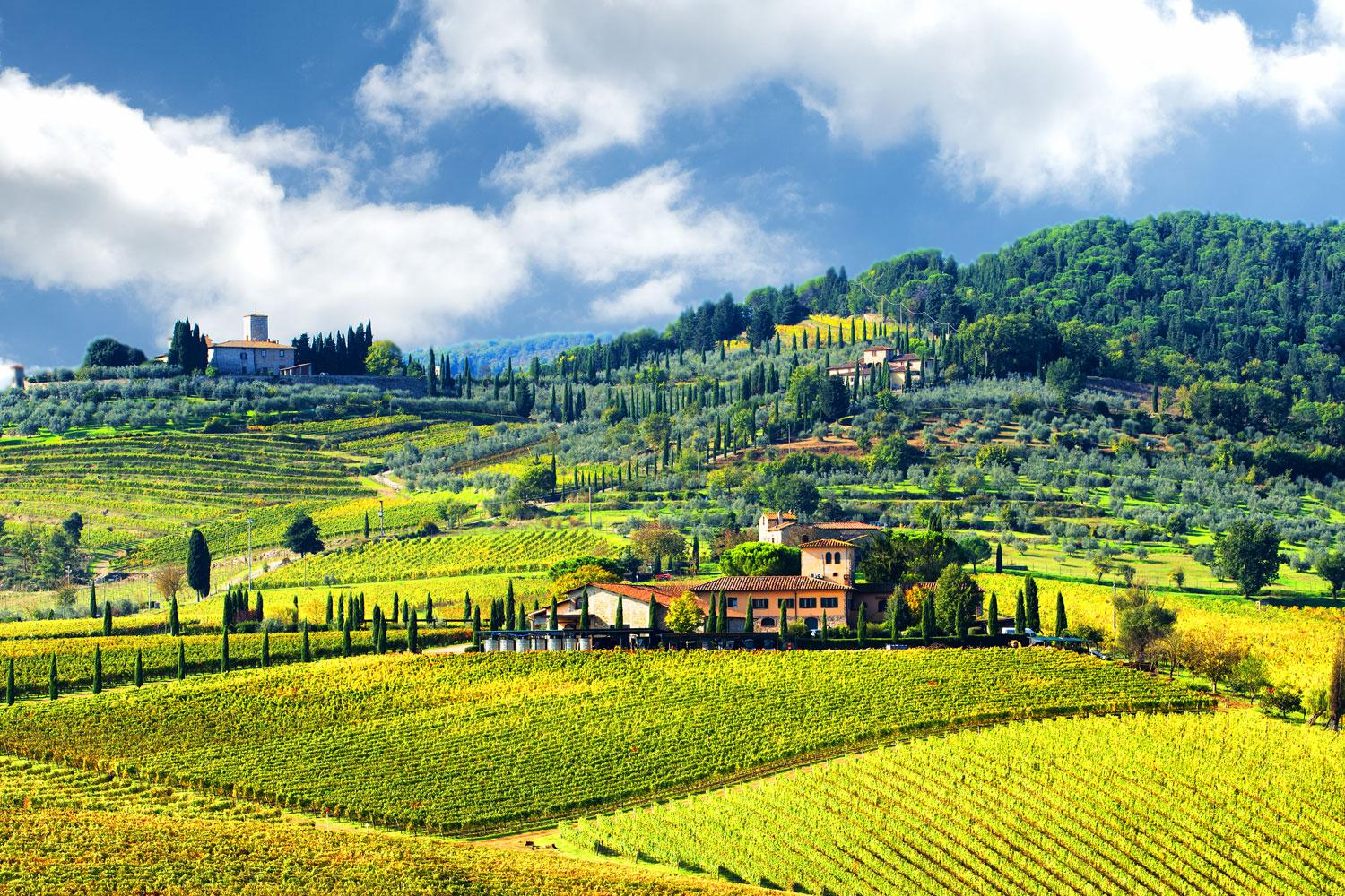 Timeless and stunning while walking in Tuscany's Chianti