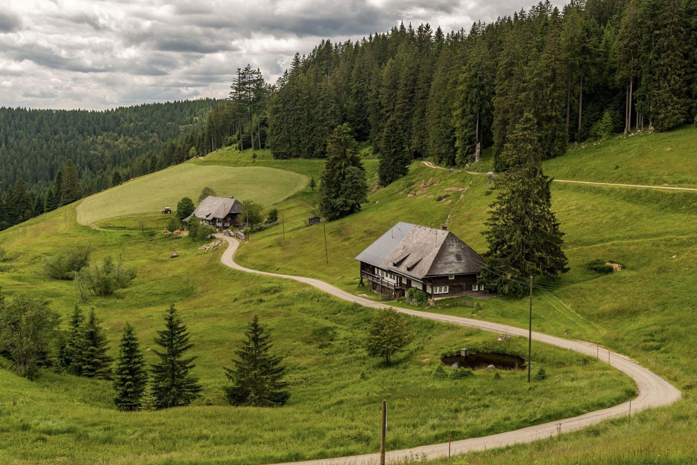 The Black Forest Gorge Trail (Copyright Schluchtensteig Schwarzwald Foto K. Hans)
