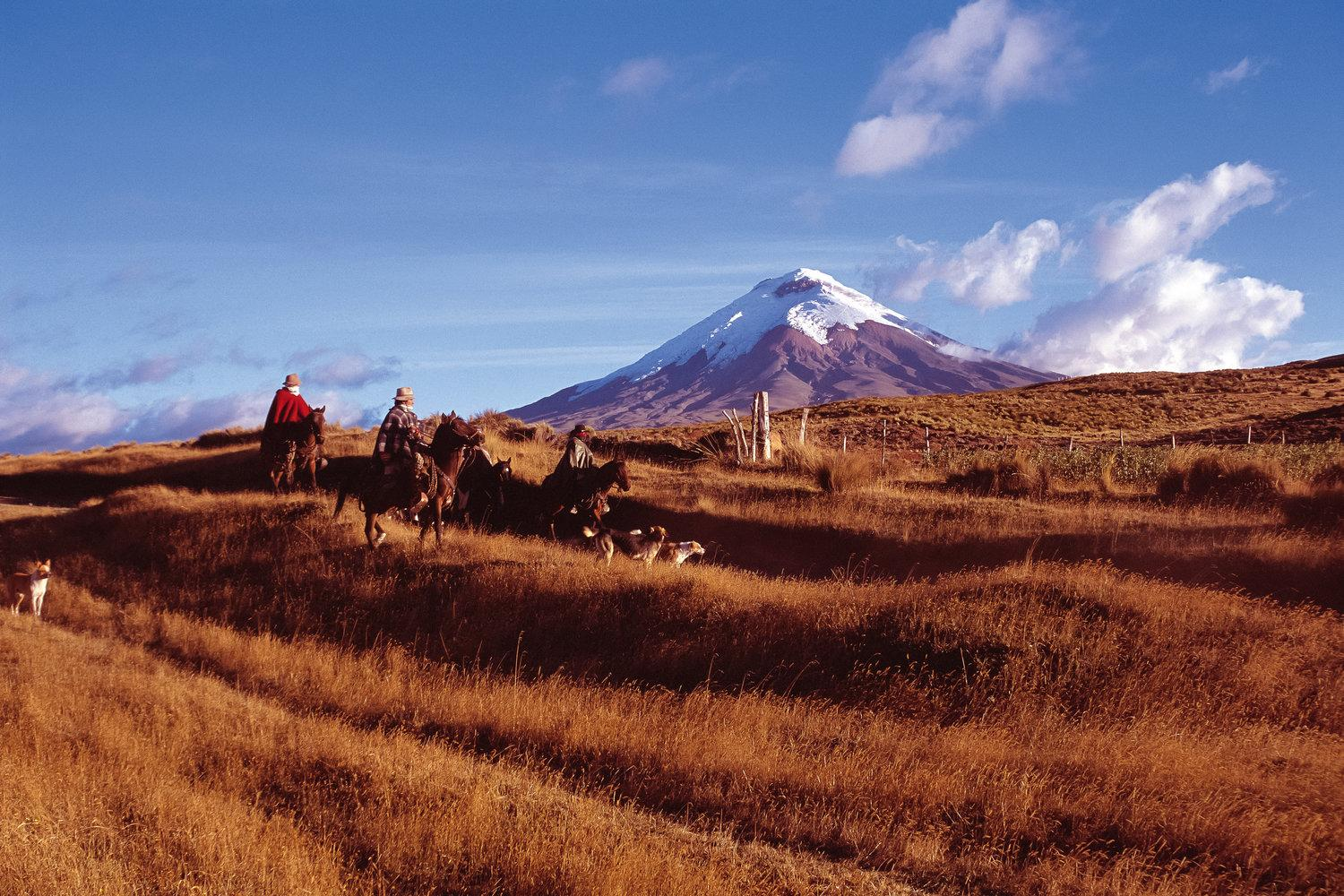 Hike through Ecuador's Avenue of the Volcanoes within the Andean Highlands and Cotopaxi National Par