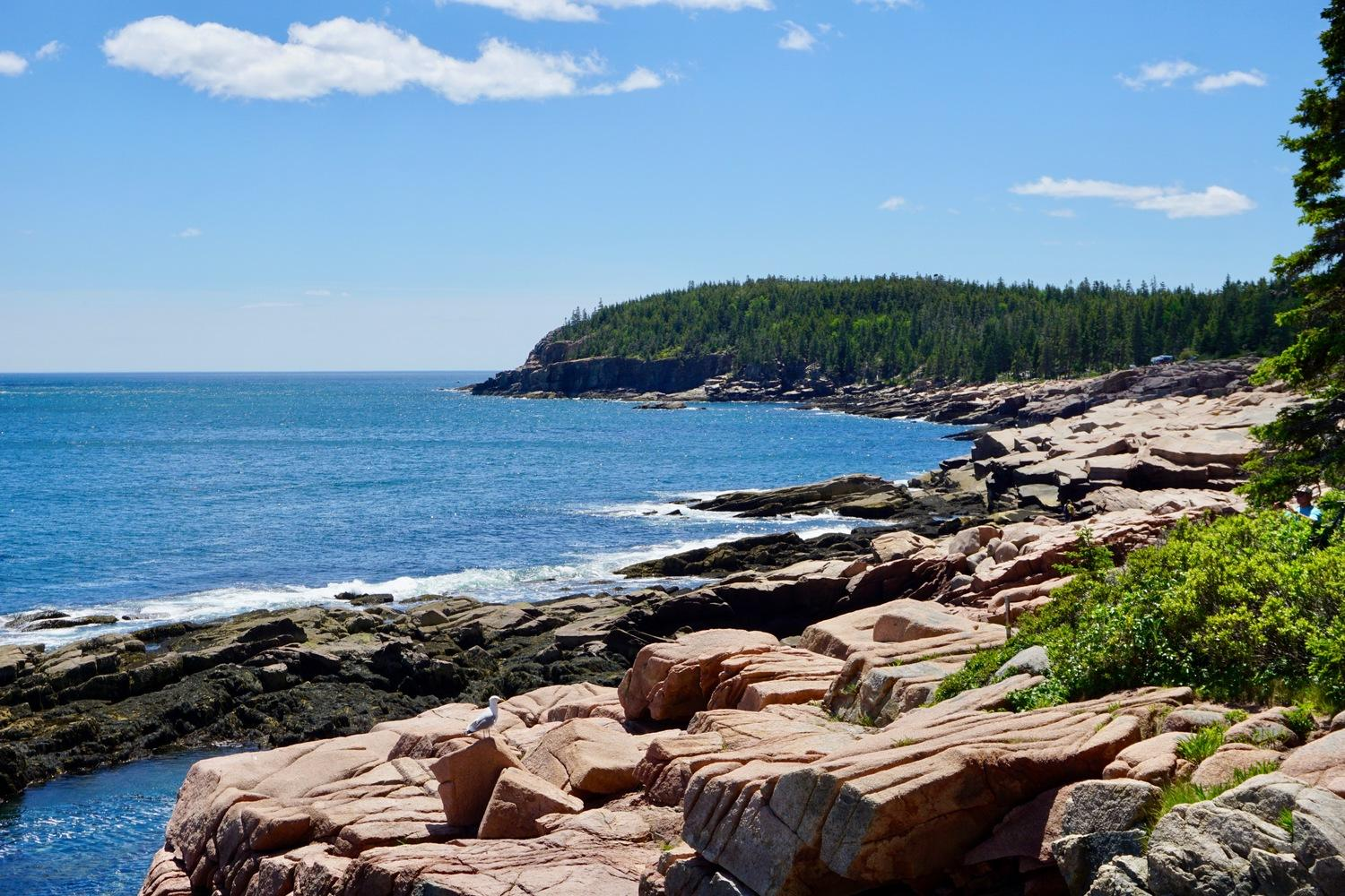 Ride from the Midcoast to Acadia National Park on this Downeast tour