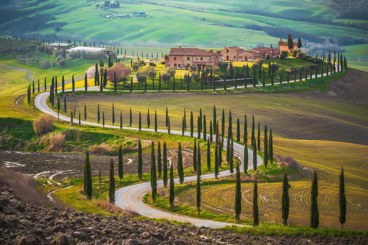 Italian Florence: Tuscany: Chianti In Italy - Florence To Siena