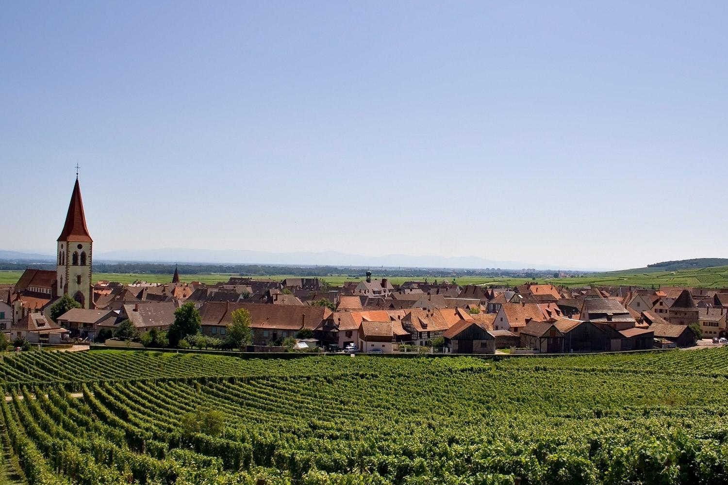 Alsace Walking Holiday