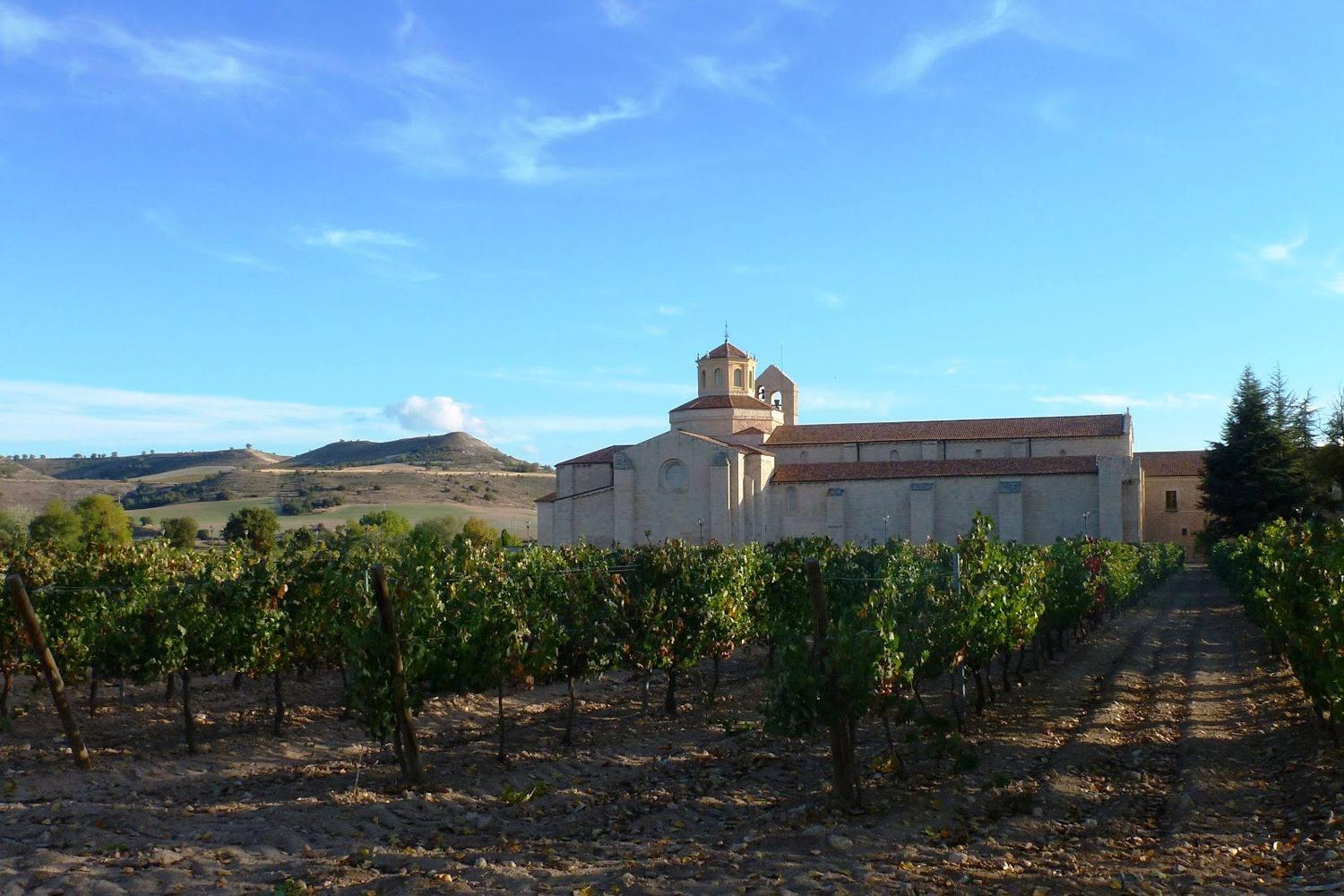 Private Wine tour in Ribera del Duero