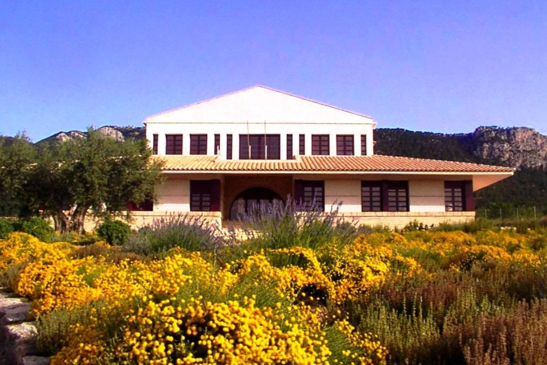 Visita Museo histórico del vino Casa de la Ermita