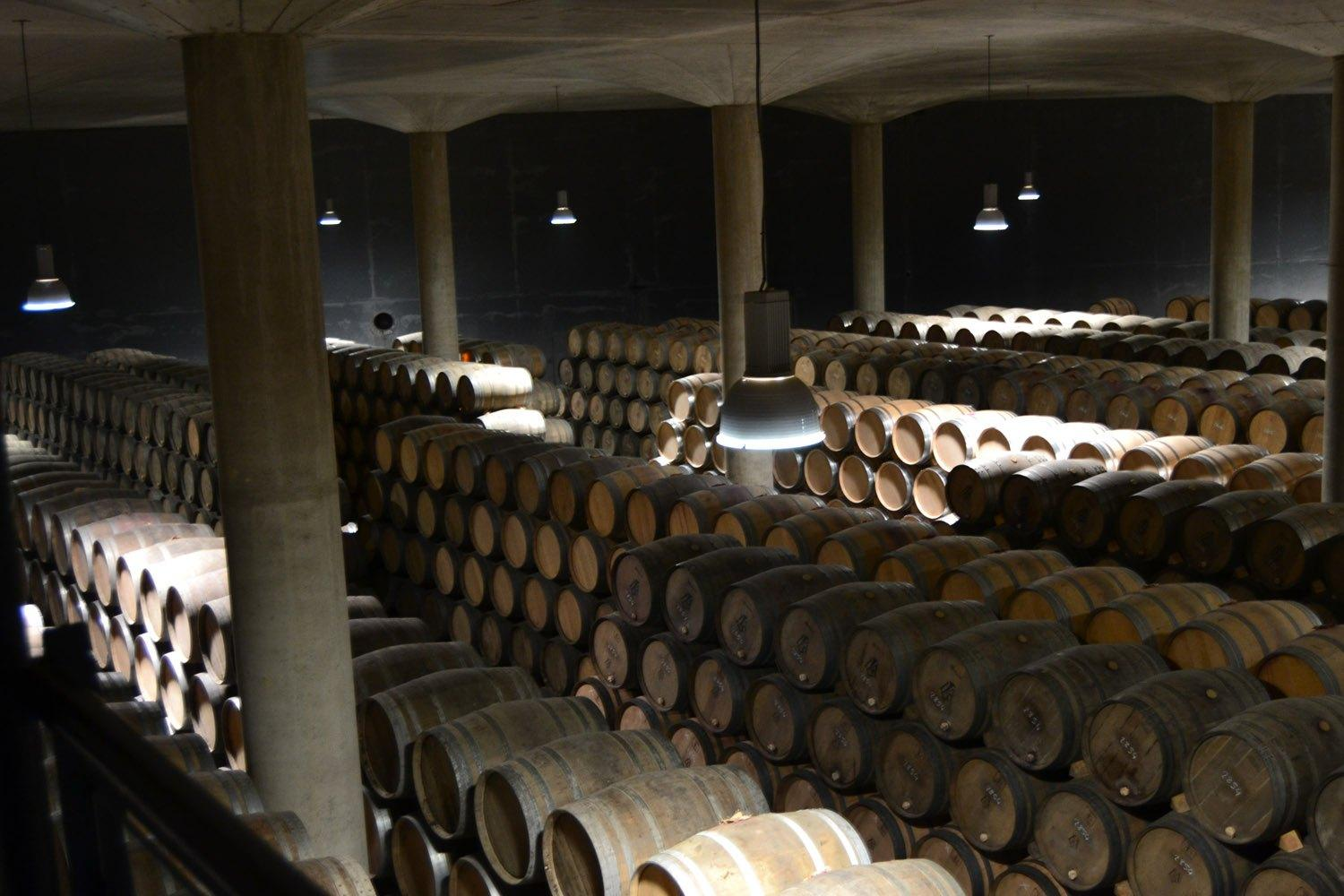 1 day wine tour in Rioja from Bilbao