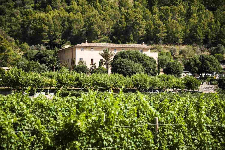 Escapada spa de lujo en Mallorca