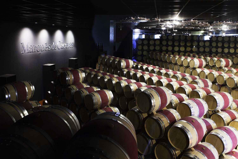 Visita bodegas Marques de Caceres en Rioja