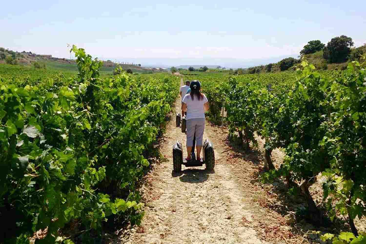 Segway winery tour in Rioja