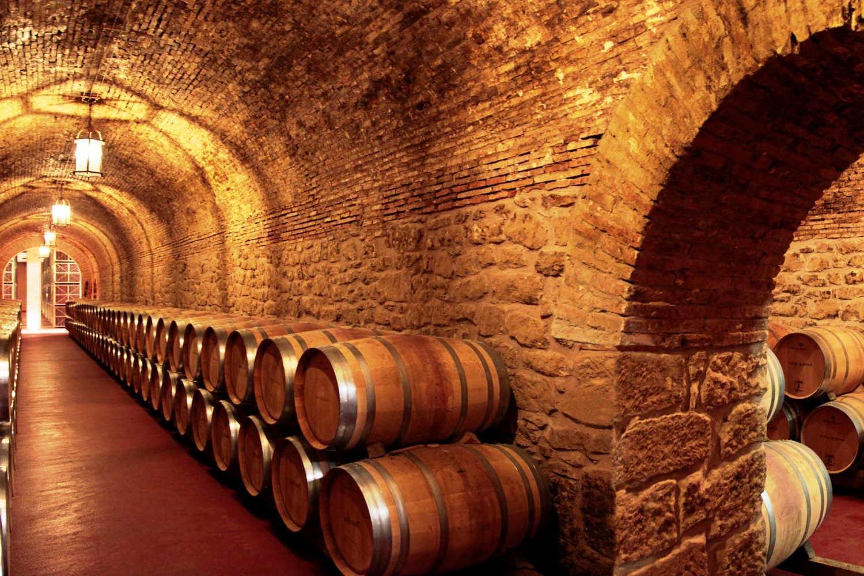 Visita bodegas Riojanas en Cenicero