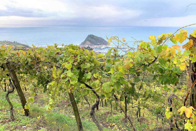 Wine tour from San Sebastian to Getaria