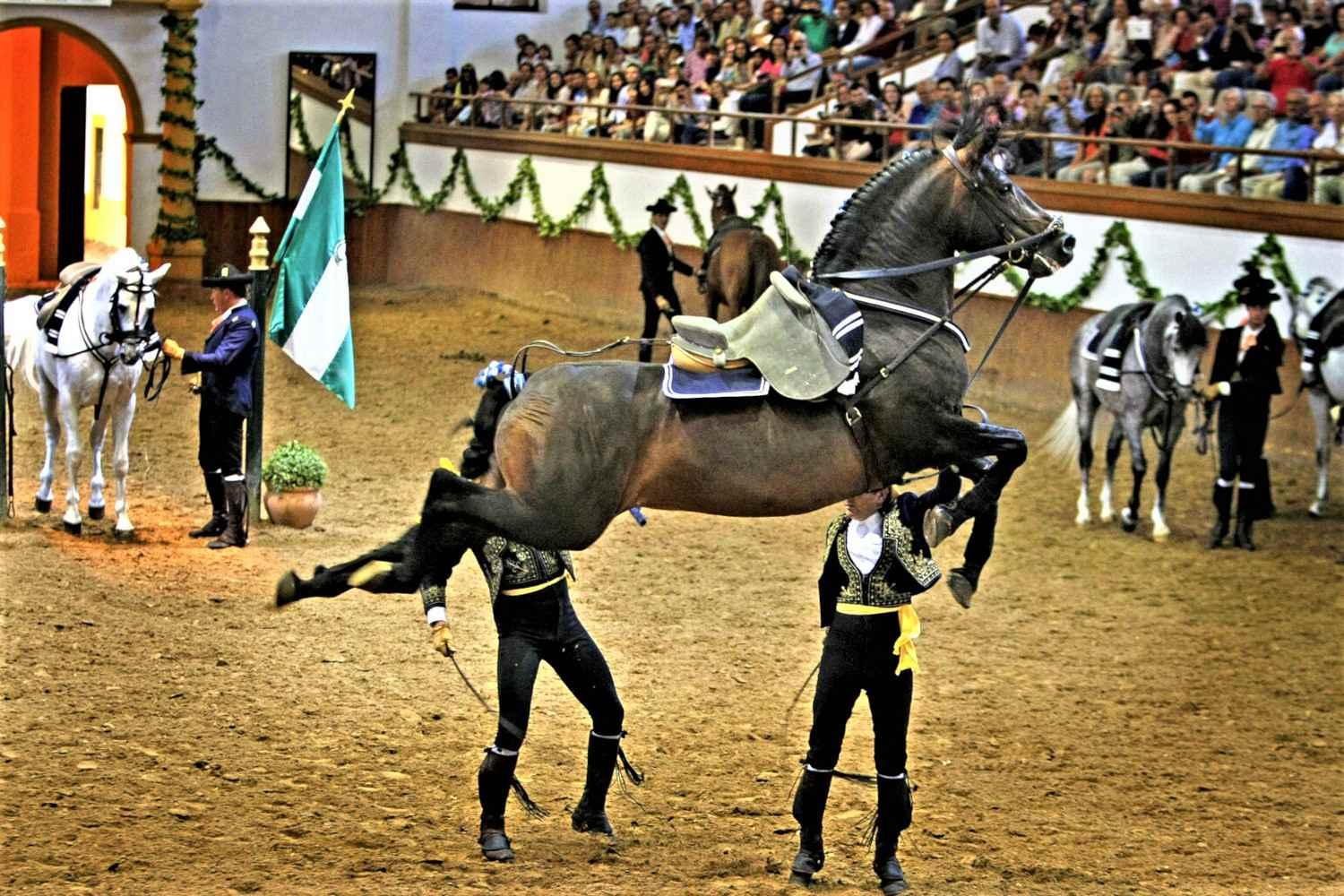 Horse dance in Jerez and winery tour