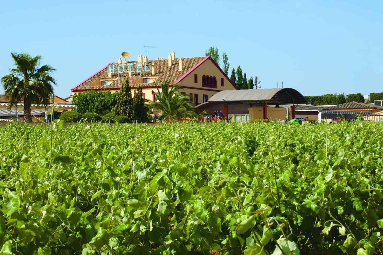 Escapada entre viñedos en Penedés