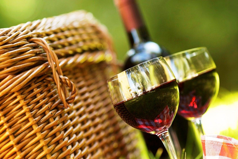 Picnic entre viñedos en La Rioja