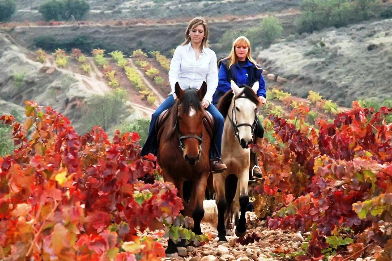 Paseo a caballo entre viñedos y visita a bodega - La Rioja