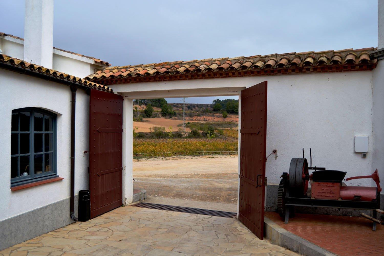 Curso de cata y viticultura en bodega del Penedes