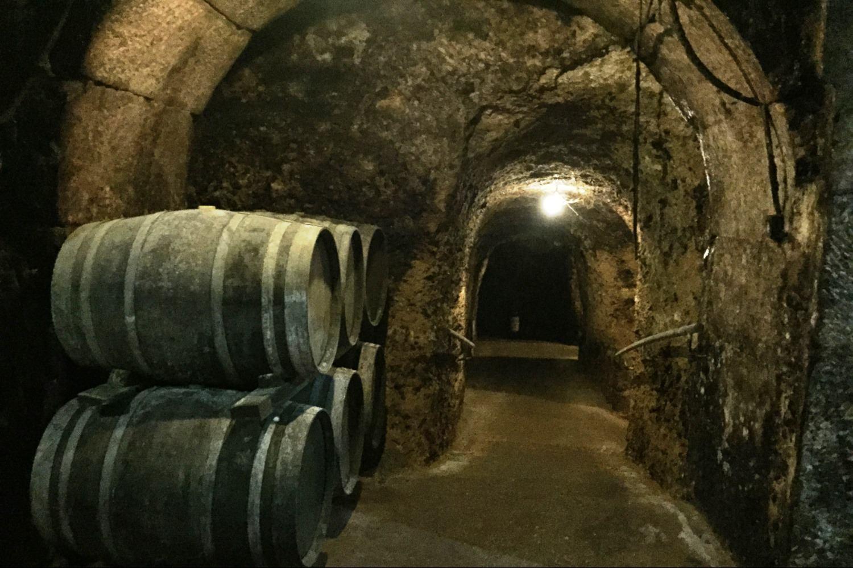 Visita a bodega en calado en Laguardia, Rioja Alavesa
