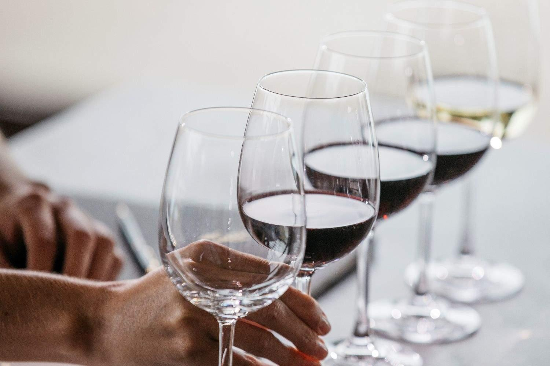 Maridaje de vinos e ibéricos en Bodegas Torres