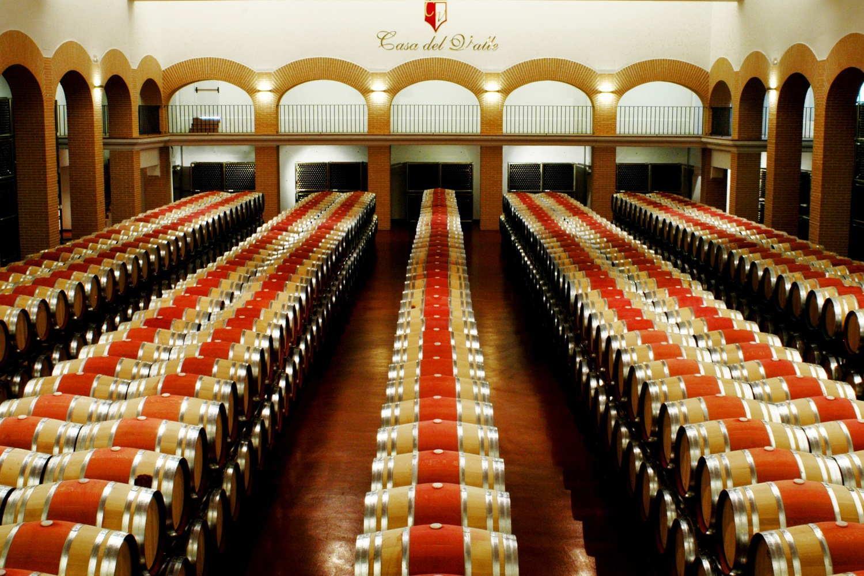 Visita a Bodegas y viñedos Casa del Valle - Yepes, Toledo