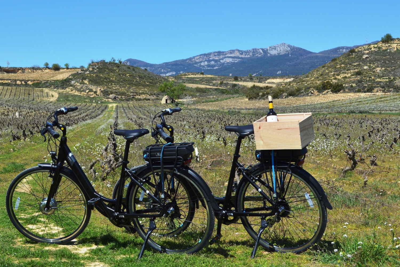 Paseo en bici entre viñedos en Rioja