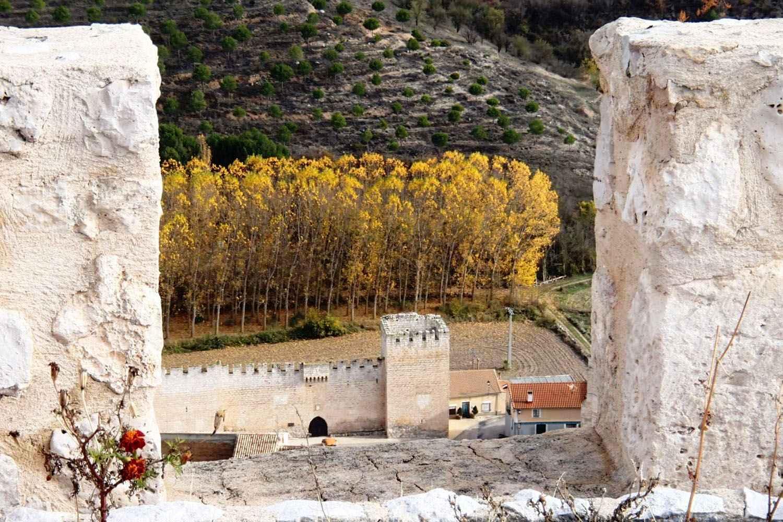 All inclusive Elba Estepona gran hotel thalasso 5*