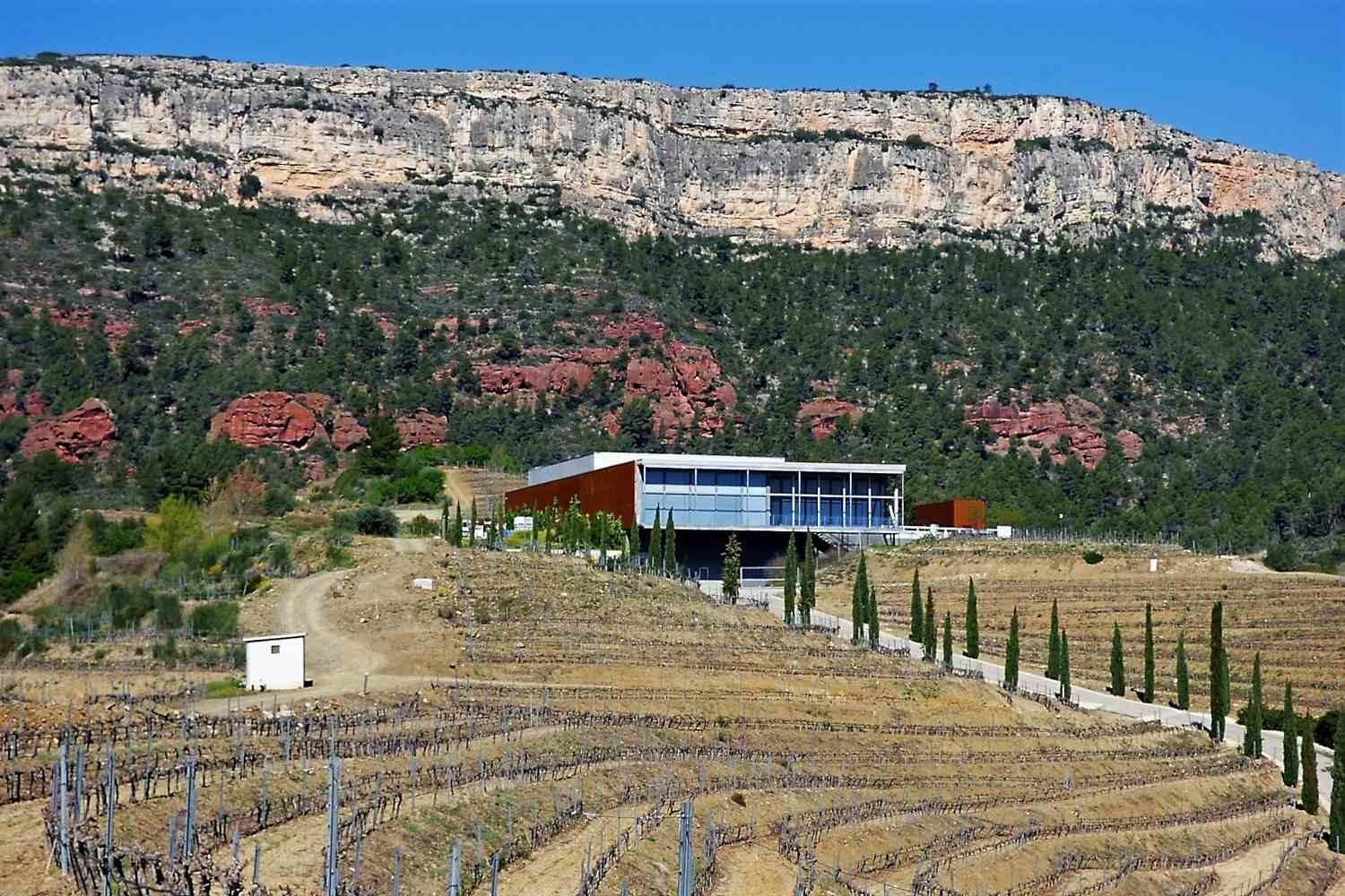 Winery in Priorat during the 4 regions wine tour from Barcelona to Madrid