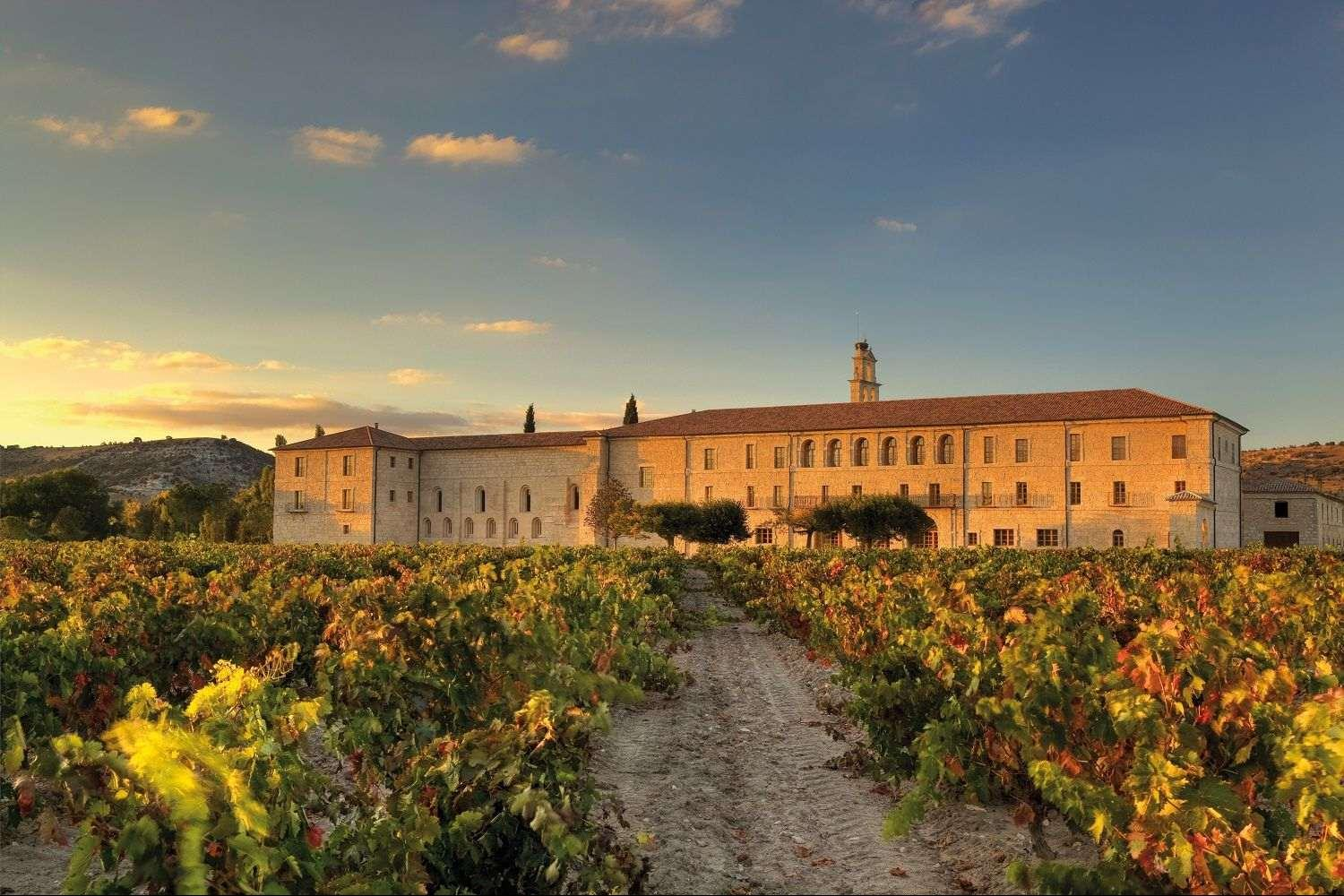 Luxury Ribera Duero tour with views to vineyards from tasting rooms