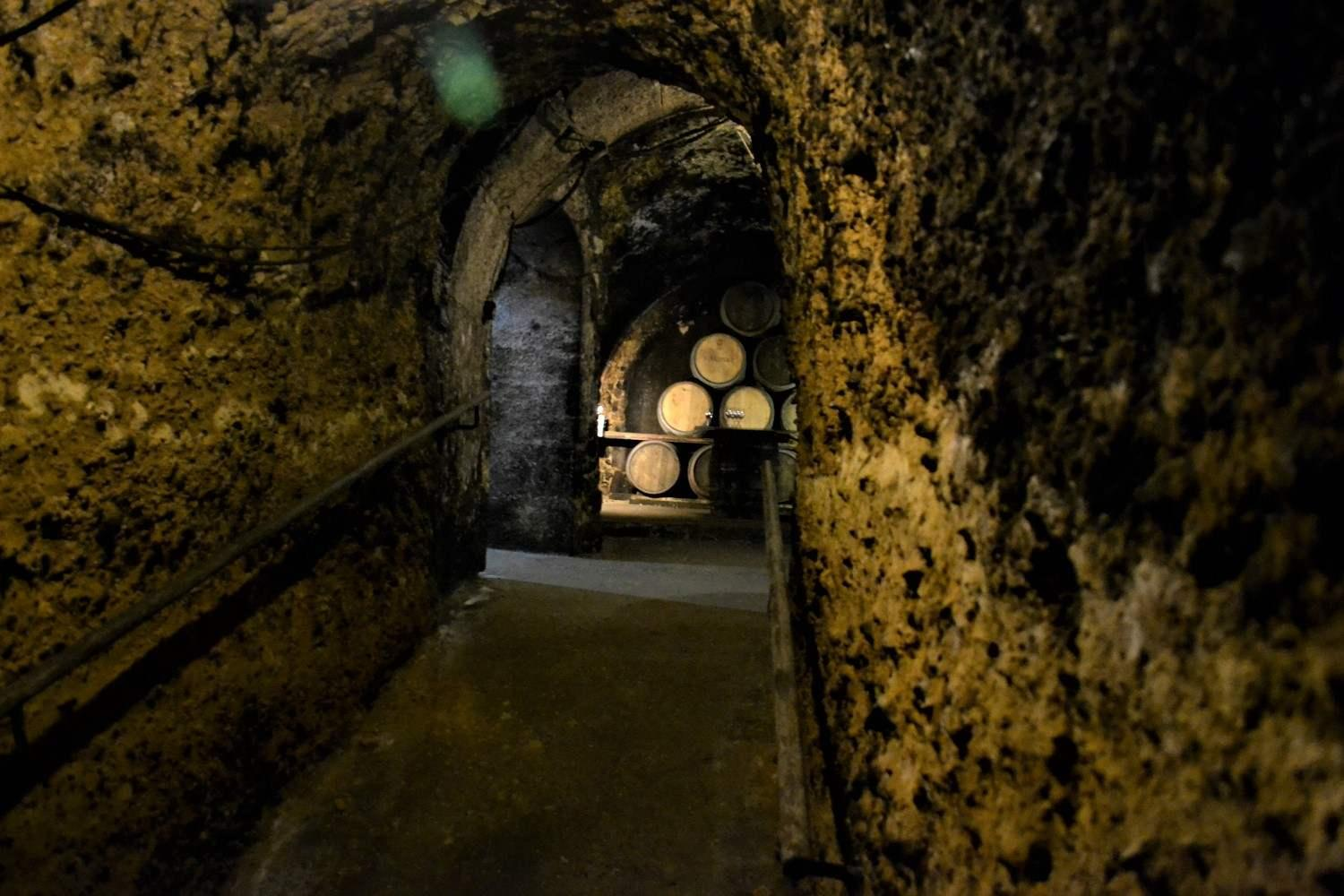Wine tasting vacation from Barcelona t Madrid with ancient wine cellars