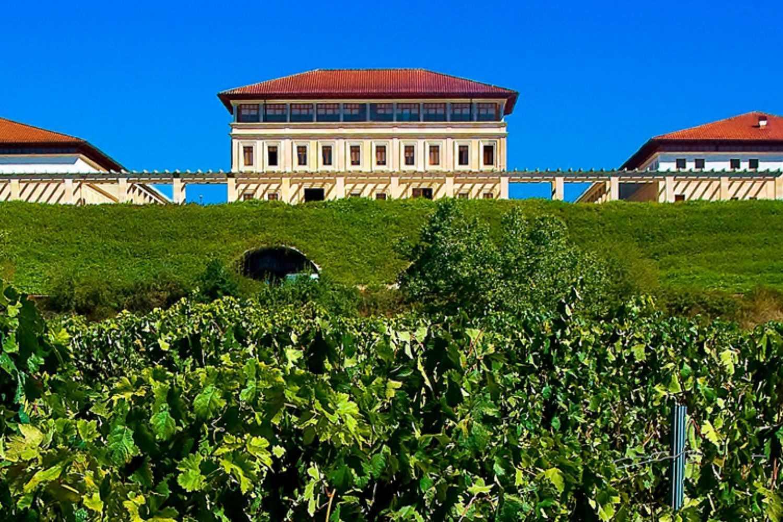 Visita a Bodegas Rioja Vega en Logroño