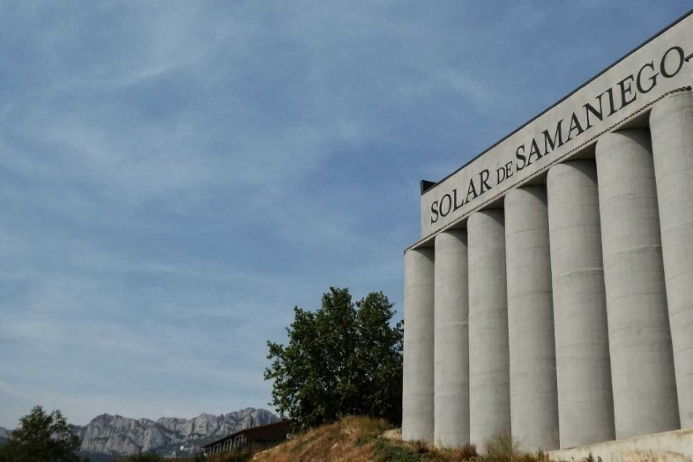 Visita a bodegas Solar de Samaniego en Laguardia
