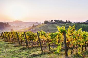 Small Group Chianti Wine and Hill Towns Tuscany Tours
