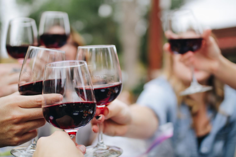 Private Venice Valpolicella Wine Day Tours