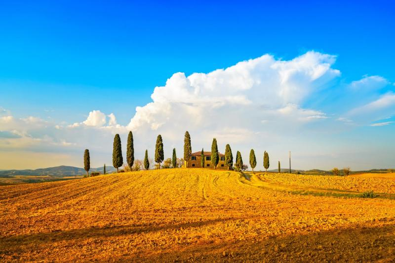 Tuscany Semi Private Day Tour with Wine and Cheese Tasting