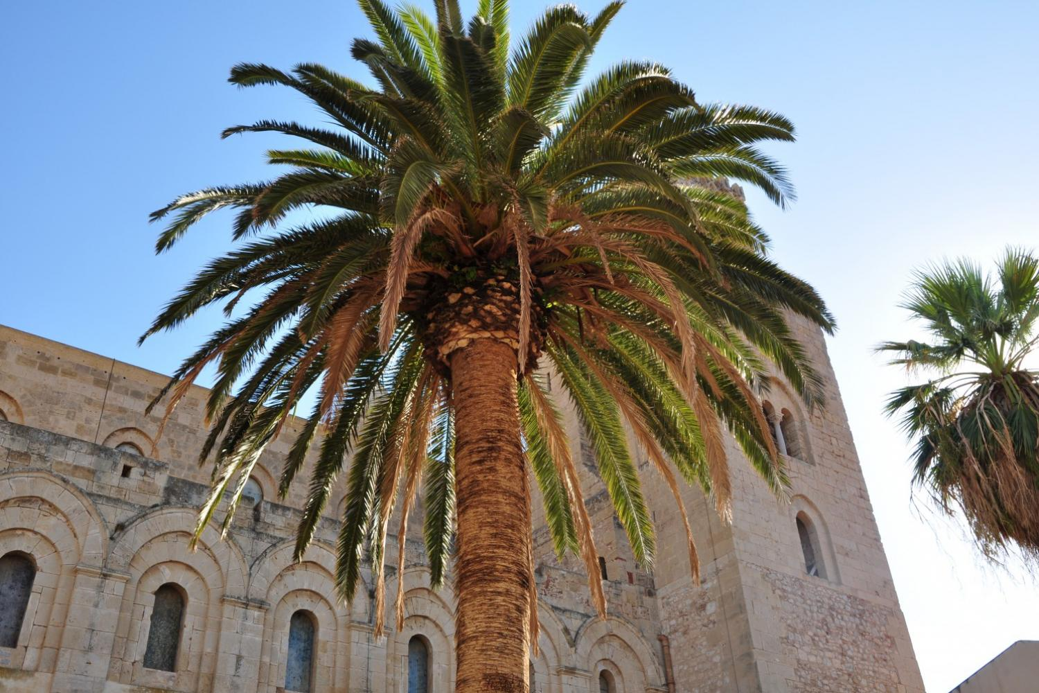 Essence of Sicily package _ palermo