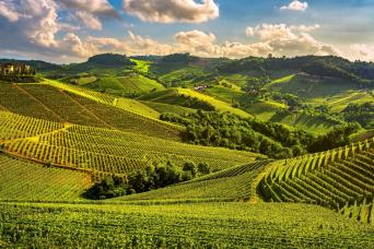 Private 3-Day Langhe World Heritage Mini Vacation Package