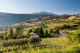 Valpolicella & Amarone wine e-bike tour