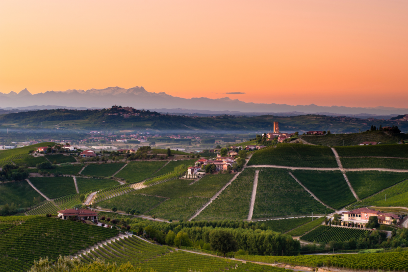 Barbaresco & Roero wine tour