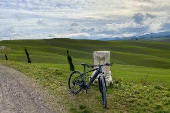 Tuscany E-bike Tour with Wine or Pecorino cheese tasting