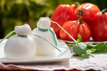 Puglia Food Tour: Burrata, Olive Oil & Wine Experience in Itria Valley