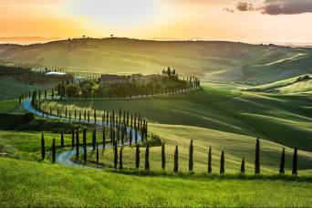 Private Brunello di Montalcino Wine tour from Florence