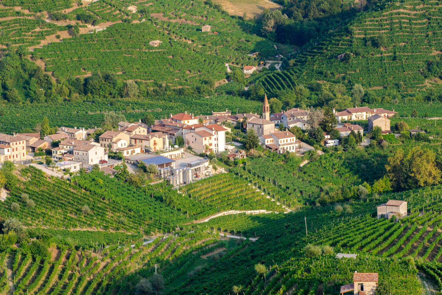 Small Group Hill Towns of Veneto Venice Day Trips - Marostica