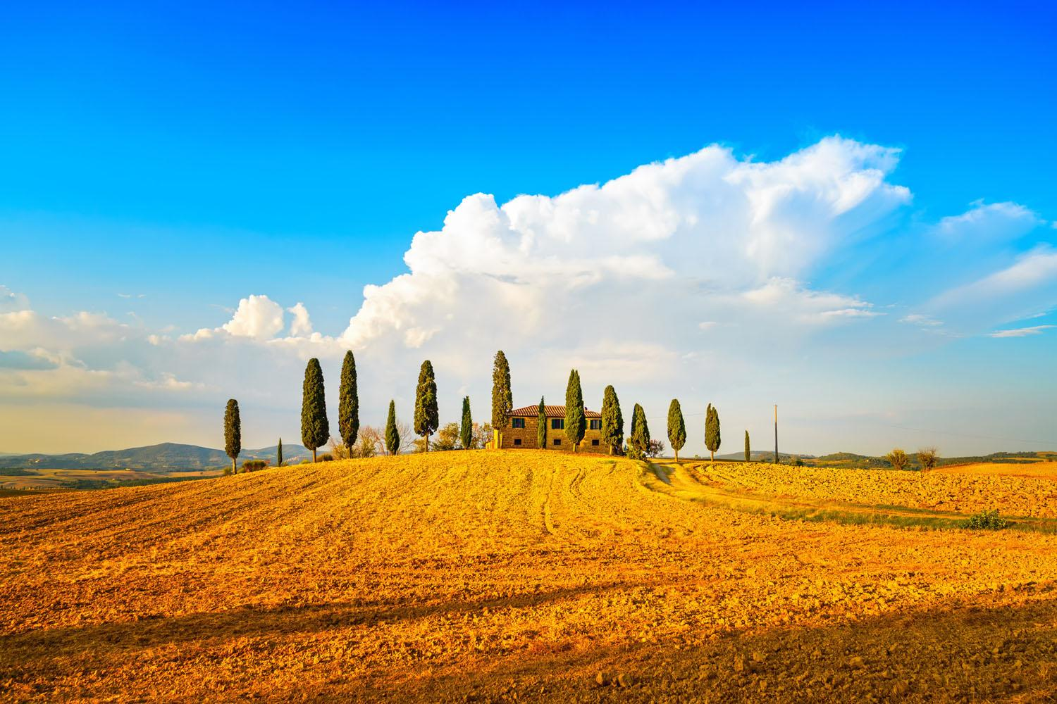 Small Group Tuscany Day Tour from Rome