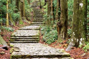 Kumano Kodo self-guided walking 5 days