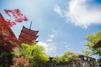 Hiroshima, Shimanami & Shikoku self-guided 9 Days