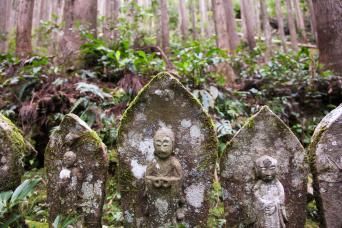 Kumano Kodo self-guided walking 6 days